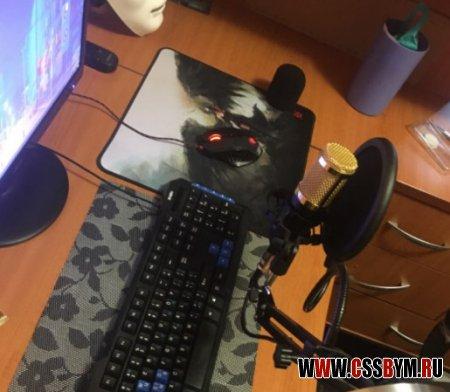 Купить лучший микрофон BM 800 для игр и звукозаписи